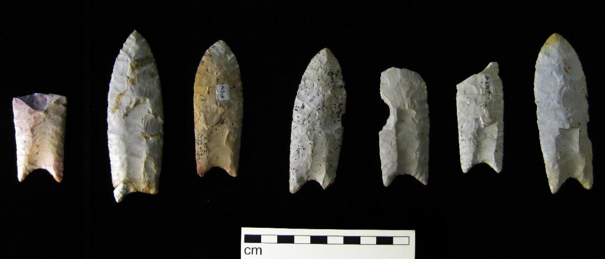 Clovis lithic techonology from the Rummells-Maske Cache Site, Iowa, featuring the famous large fluted lanceolate points. Source:  Billwhittaker at English Wikipedia, CC BY-SA 3.0, https://commons.wikimedia.org/w/index.php?curid=11125587
